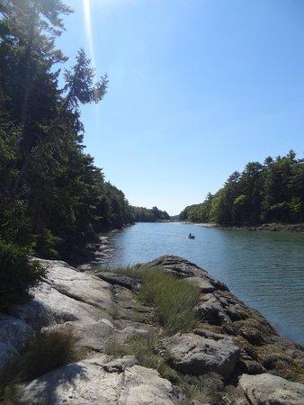 View along a hike in Coastal Maine Botanical Gardens