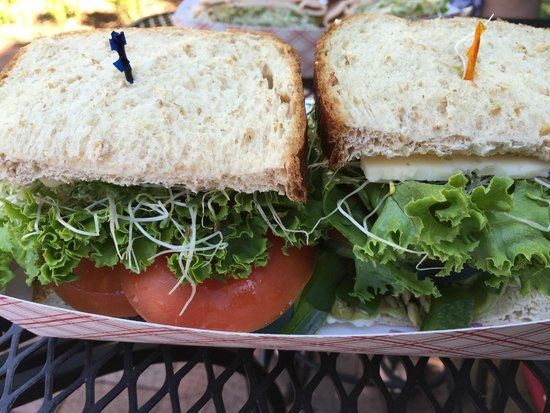 The Original Nelson Cheese Factory: Veggie sandwich