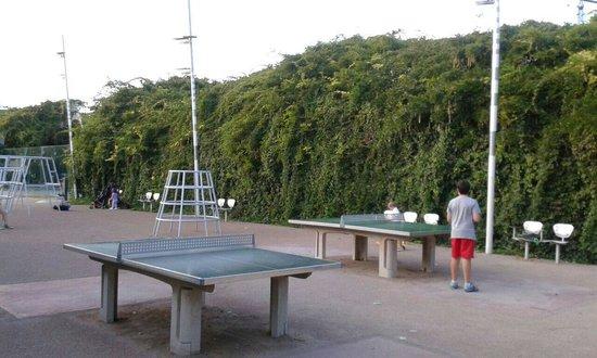 Αποτέλεσμα εικόνας για barcelona ping pong