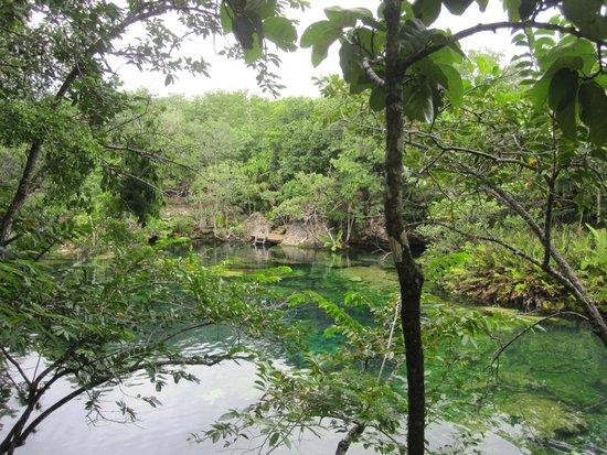 Yucatek Divers: Ponderosa - El eden - cenote