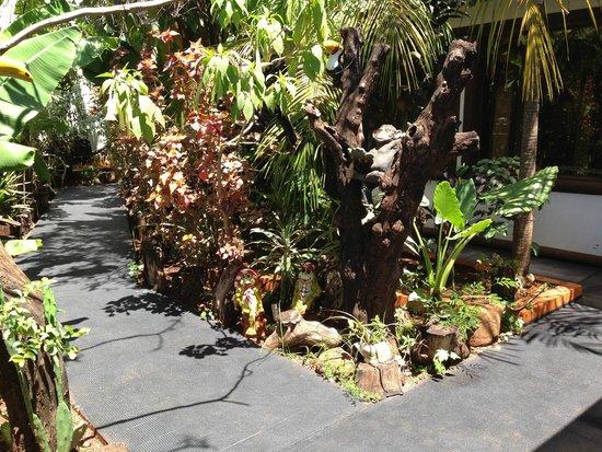 Petit Hotel Si Mi Capitan: giardino