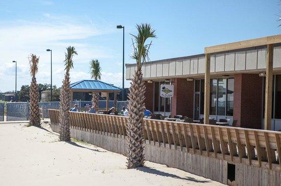 Paradise Ocean Club