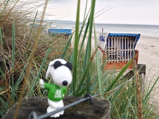 Bayside: Strand von Scharbeutz im Herbst
