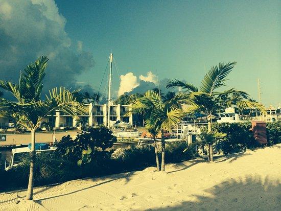 Courtyard by Marriott Key Largo : pool side