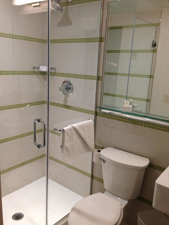 SpringHill Suites New York Midtown Manhattan/Fifth Avenue: Bathroom...new and nice!