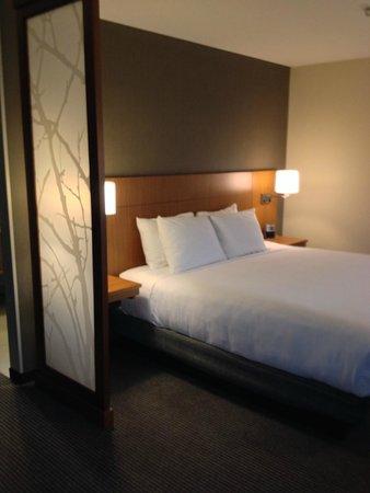 Hyatt Place Charlottesville: Comfortable king bed