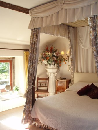 Biggin Hall Country House Hotel: Low window on to rear garden