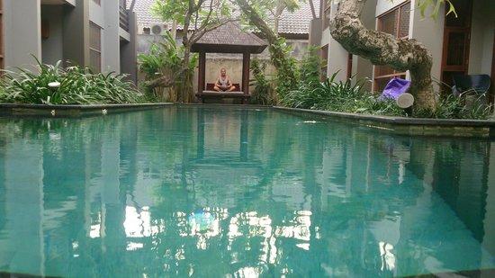 Casa Bidadari: Первый этаж. Бассейн, беседка....