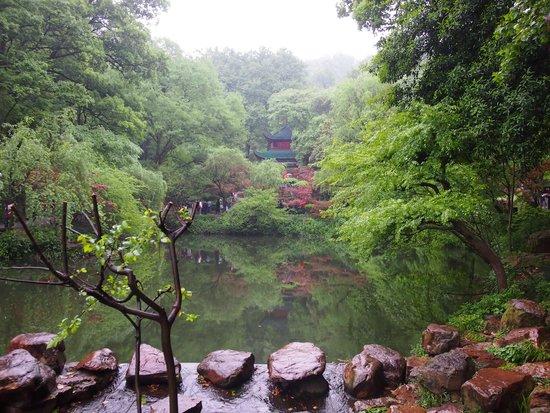 Mount Yuelu : สงบ สดชื่น