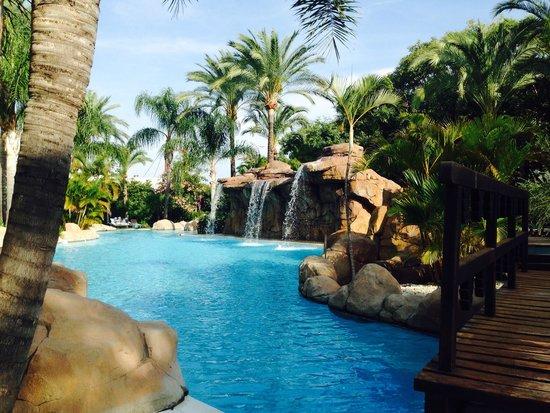 Foto de meli marbella banus marbella piscina cascada for Piscinas con cascadas