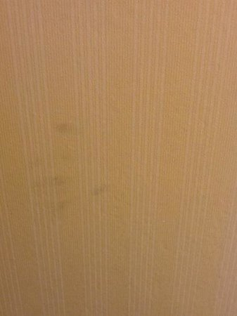 The Holiday Inn Niagara Falls: hand prints in bathroom