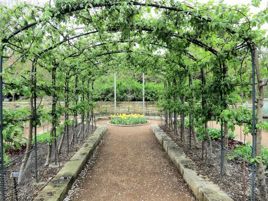 Superbe Reiman Gardens: Trellis Garden
