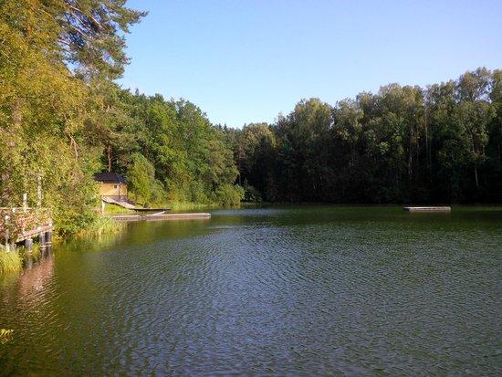 Nelijarve Holiday Centre: Blick auf den See