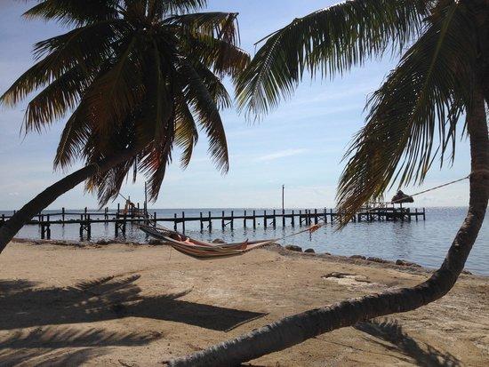 Seashell Beach Resort: View of hammock and dock