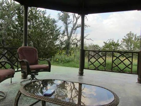 Cat's Meow Bed & Breakfast: View from gazebo