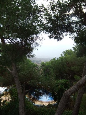 Hospederia la Mariposa: Looking down to the pool from the terrace