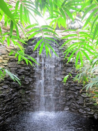 Greater Des Moines Botanical Garden: Des Moines Botanical Garden   Pretty  Waterfall