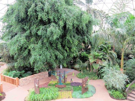 Des Moines Botanical Garden Picture Of Greater Des