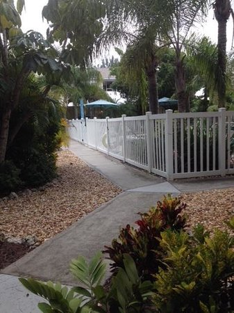 Sand 'N' Sea Villas: View from 113B door