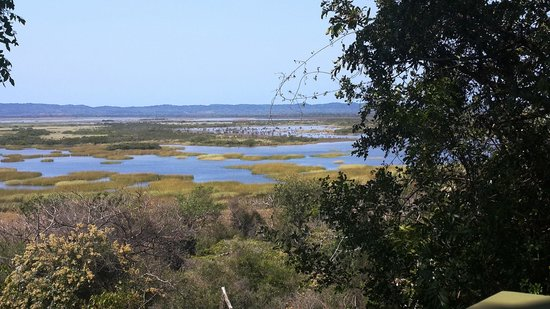 iSimangaliso Wetland Park: West shore