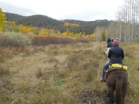Devil's Thumb Ranch Resort & Spa: Horseback Riding