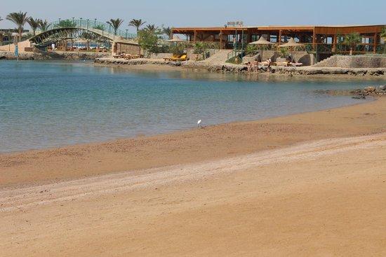 The Desert Rose Resort : Хороший отель...