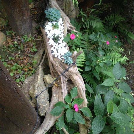 Aruna Eco Spa: creative plantings