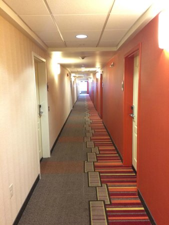 Home2 Suites by Hilton Jacksonville : Hotel Hallways