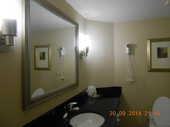 Sawgrass Grand Hotel and Suites Sports Complex: banheiro do hotel