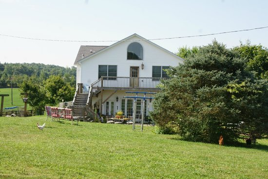 Country Girl at Heart Farm Bed & Breakfast : The rear patio and deck, perfect for stargazing.