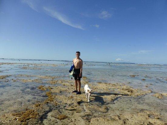 SigaSiga Sands Resort : snorkeling with Tuktuk