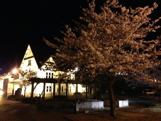 Tsuruga Museum: 夜はライトアップされます
