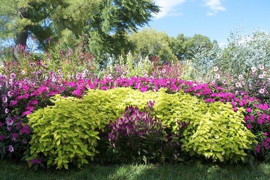 Garden picture of hillwood estate museum gardens washington dc tripadvisor for Hillwood estate museum gardens