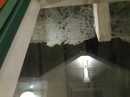 Las Acacias : El techo vidriado me permitió ver la nieve caer!