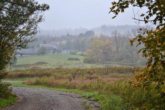 Millcroft Inn & Spa : One of the many trails