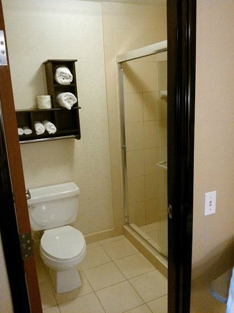 Hampton Inn Phoenix-Biltmore: Bedroom bathroom