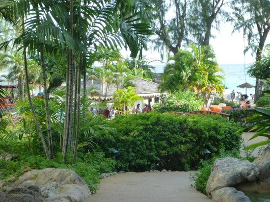 Bougainvillea Beach Resort : Resort compound