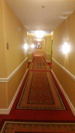 Renaissance Tampa International Plaza Hotel: Hallway