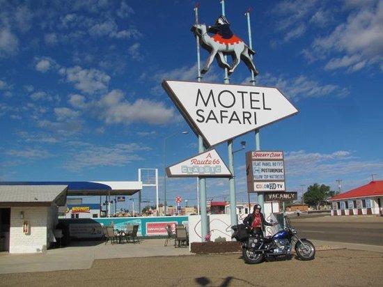 Motel Safari: Such a cool sign