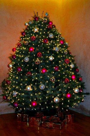 Hotel Jardines del Centro: Елка на рождество