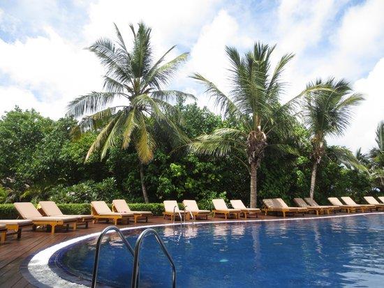 Adaaran Prestige Vadoo : プールはほとんど空いていて快適!入る前にシャワーをしないと注意されます。