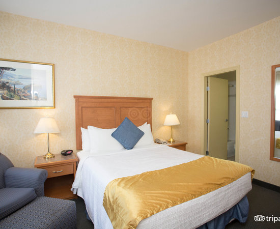 The Standard Queen Room (Upper Level) at the BEST WESTERN PLUS Uptown Hotel