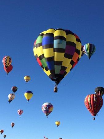 Balloon Fiesta Park: Insieme di mongolfiere