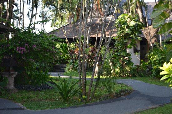 Hotel Vila Lumbung: the gardens and villa