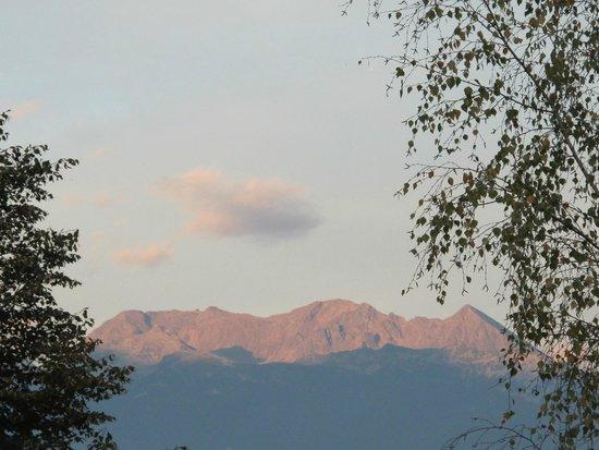 B&B Il Grappolo Valtellina: vista dalla camera verde