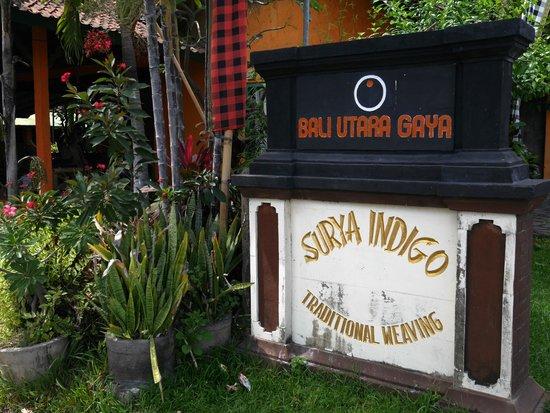 Surya Indigo