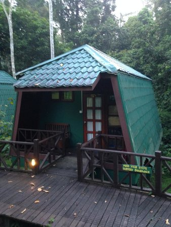 Tabin Wildlife Resort: The chalet by the river