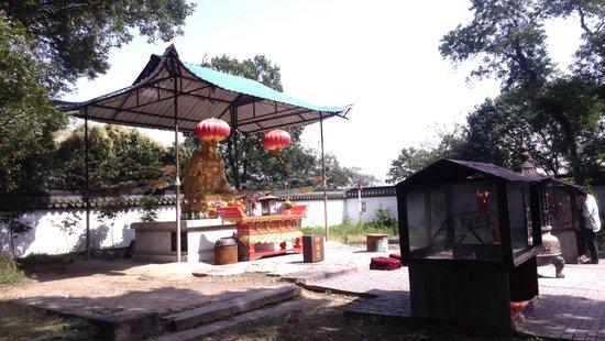 Songjiang Tianma Mountain: 山頂的寺廟