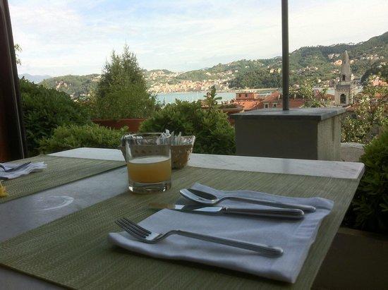 Doria Park Hotel: Vista dalla terrazza per la colazione