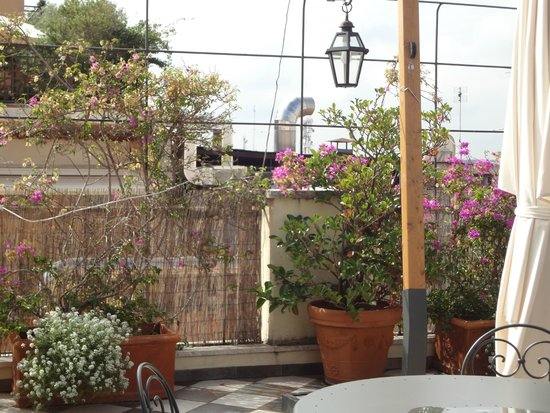 Hotel Nord Nuova Roma: Terraza